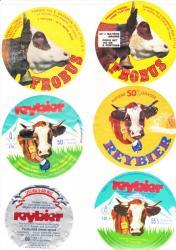 fromage-fondu-pour-tartine-10.jpg