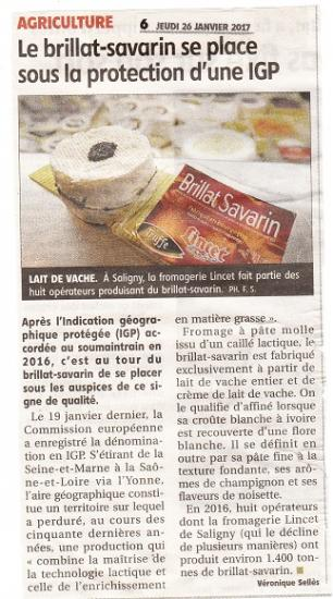 Igp brillat savarin 1